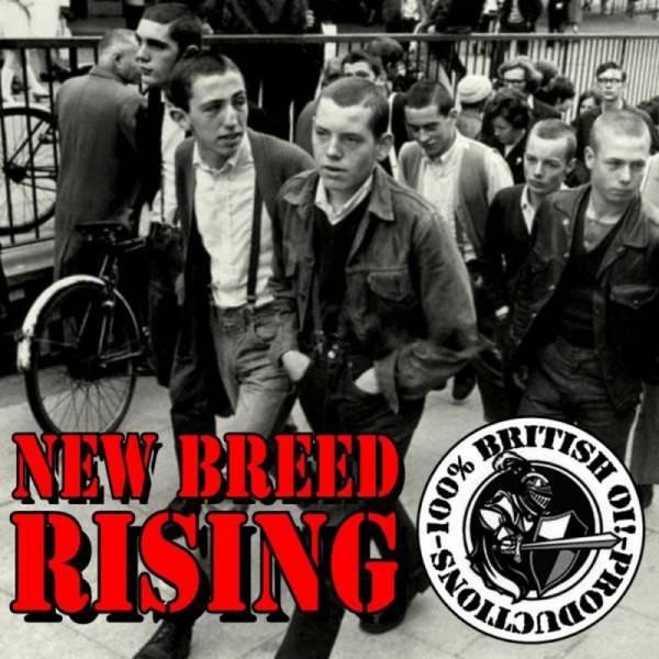 V/A New Breed Rising, LP rot, lim. 100