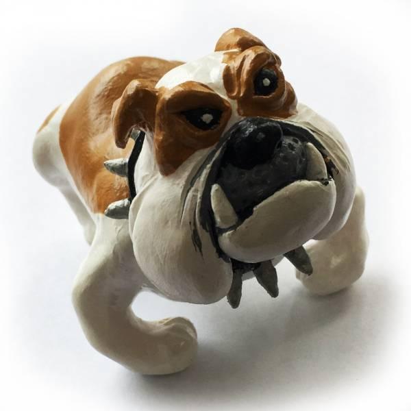 Bulldogge, Figur